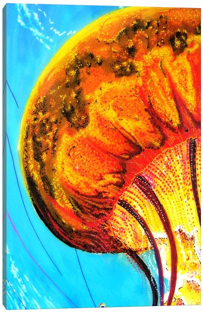 Jelly Canvas Art Print