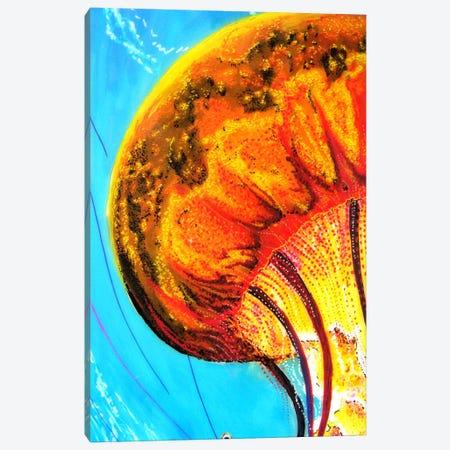 Jelly Canvas Print #MNM18} by Martin Nasim Canvas Print