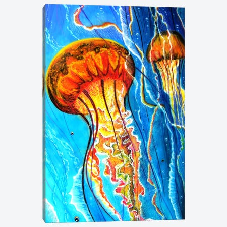 Jellys Canvas Print #MNM19} by Martin Nasim Canvas Art Print