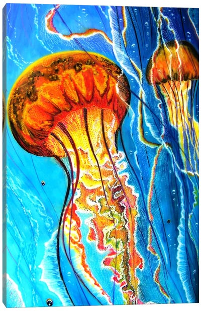 Jellys Canvas Art Print
