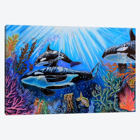 Killer Whales Canvas Print #MNM20} by Martin Nasim Canvas Wall Art
