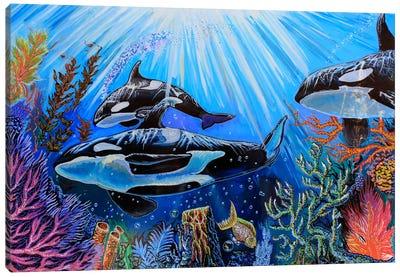 Killer Whales Canvas Art Print