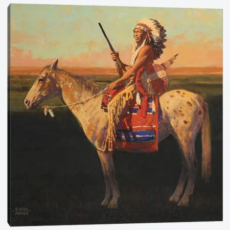 Prairie Shadows Canvas Print #MNN41} by David Mann Canvas Print