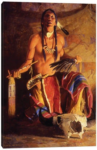 Song Of The Buffalo Canvas Art Print