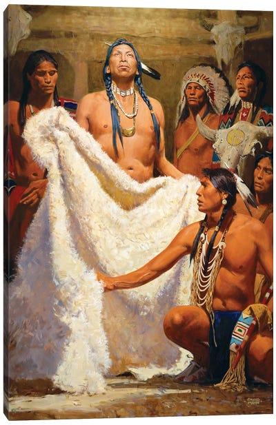 White Buffalo Robe Ii Canvas Art Print