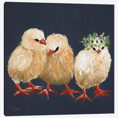 Chick Trio Canvas Print #MNO8} by Michele Norman Art Print
