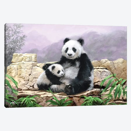 Panda II Canvas Print #MNS114} by The Macneil Studio Canvas Wall Art