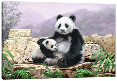 Panda II Canvas Art Print