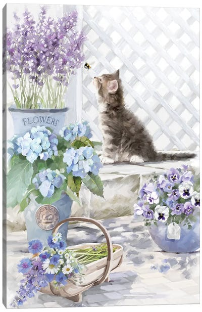 Kitten II Canvas Art Print