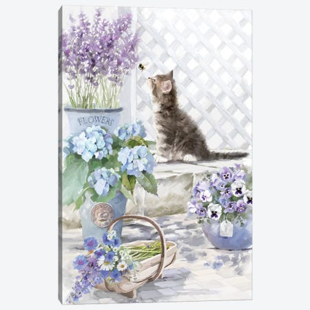 Kitten II Canvas Print #MNS127} by The Macneil Studio Art Print