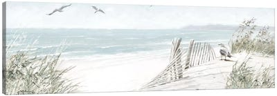 Coastal Dunes II Canvas Art Print