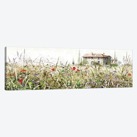 Tuscan Grasses Canvas Print #MNS156} by The Macneil Studio Canvas Art