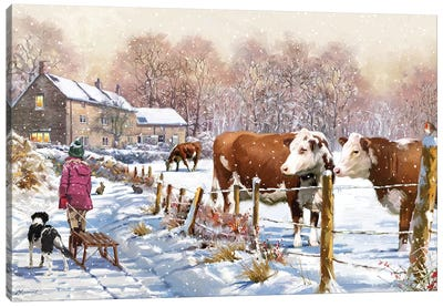 Christmas Cattle Canvas Art Print