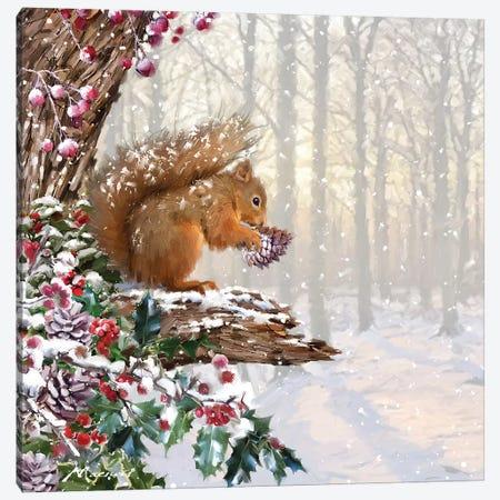 Christmas Squirrel II Canvas Print #MNS252} by The Macneil Studio Canvas Art