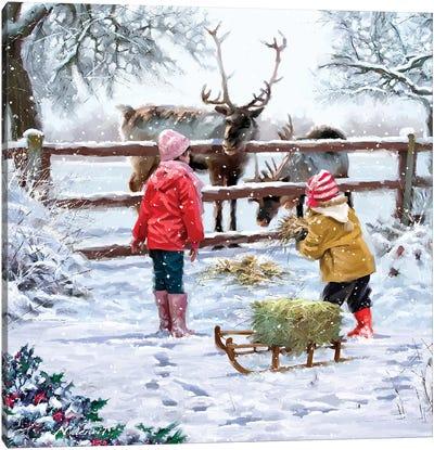 Feeding Reindeer Canvas Art Print