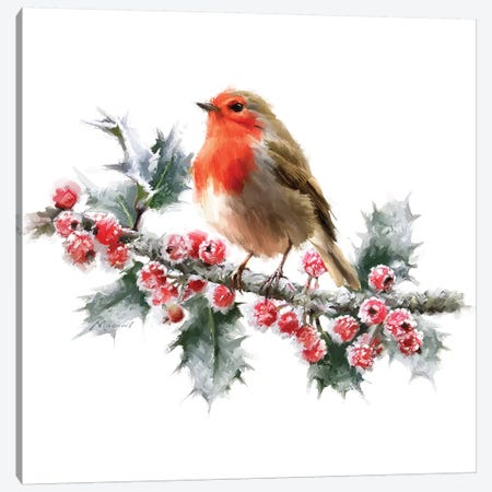 Robin On Frost Canvas Print #MNS470} by The Macneil Studio Canvas Art