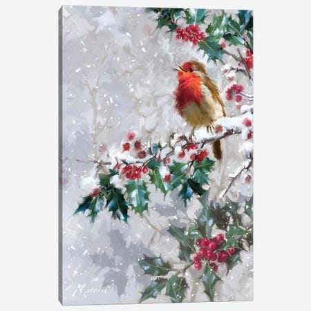Robin On Holly I Canvas Print #MNS473} by The Macneil Studio Canvas Artwork
