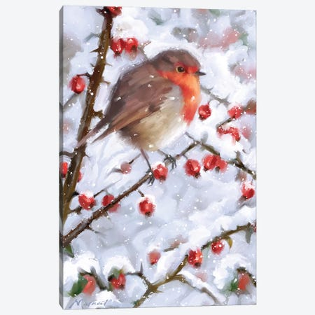 Robin With Winter Berries Canvas Print #MNS483} by The Macneil Studio Canvas Art Print