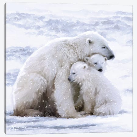 Polar Bear Cubs Canvas Print #MNS77} by The Macneil Studio Canvas Artwork