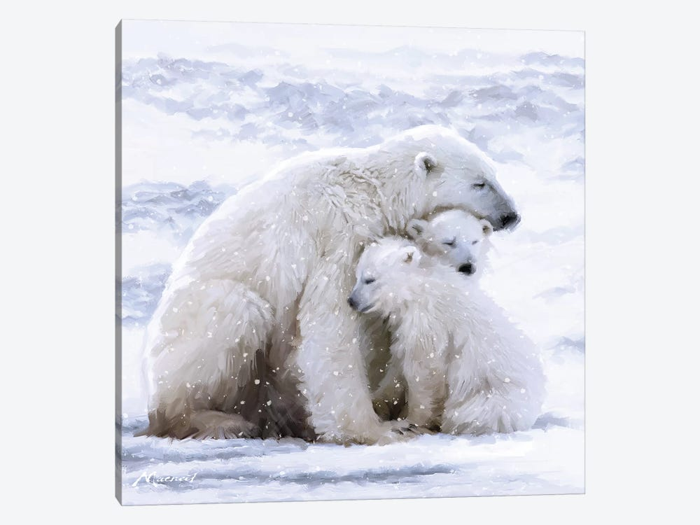 Polar Bear Cubs by The Macneil Studio 1-piece Canvas Print