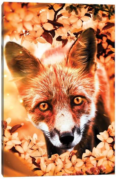 Curious Fox Canvas Art Print