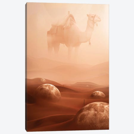 Desert Moons Canvas Print #MNU15} by Manuel Luces Canvas Wall Art