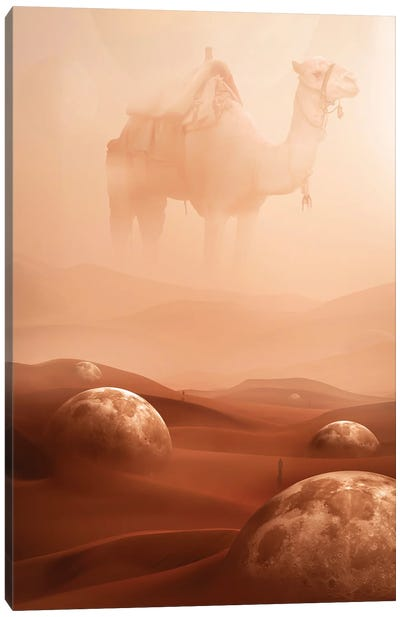 Desert Moons Canvas Art Print