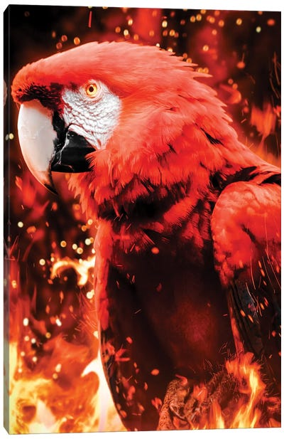 Fire Parrot Canvas Art Print