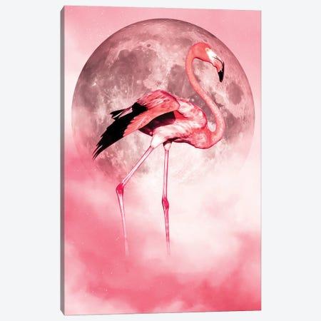 Flamingo Canvas Print #MNU24} by Manuel Luces Canvas Art Print
