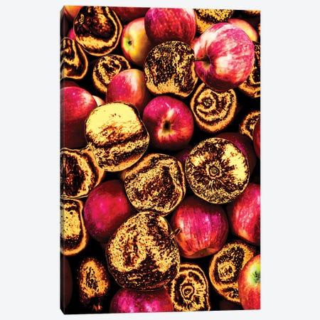 Golden Apples Canvas Print #MNU30} by Manuel Luces Art Print