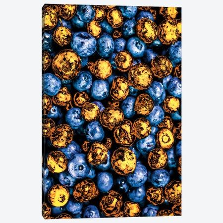 Golden Blueberries Canvas Print #MNU31} by Manuel Luces Art Print
