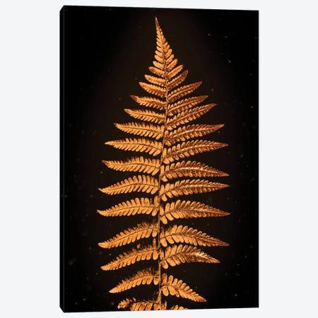 Golden Ferns Canvas Print #MNU32} by Manuel Luces Canvas Art Print