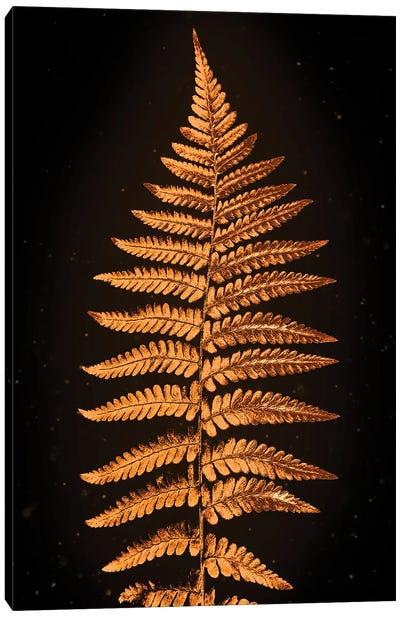 Golden Ferns Canvas Art Print