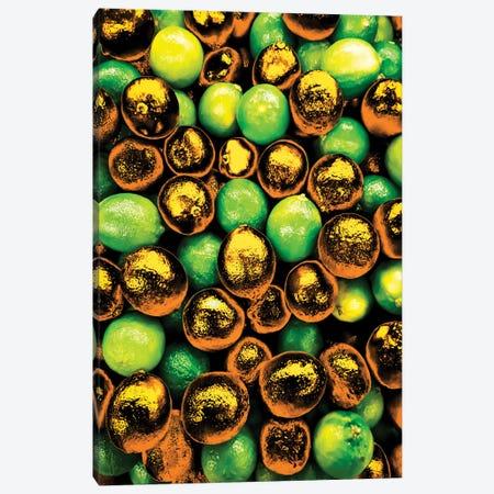 Golden Lemons Canvas Print #MNU35} by Manuel Luces Canvas Art