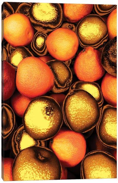 Golden Oranges Canvas Art Print