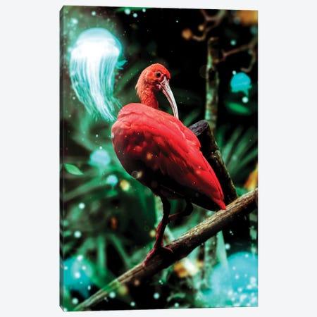 Bird Canvas Print #MNU3} by Manuel Luces Canvas Art