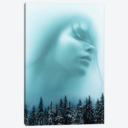 Mist Canvas Print #MNU49} by Manuel Luces Canvas Art