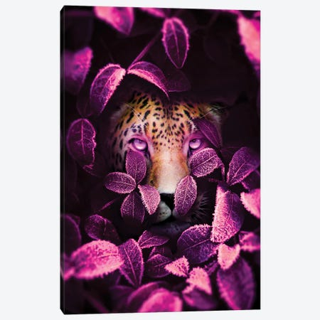 Pink Eyes Jaguar Canvas Print #MNU57} by Manuel Luces Canvas Wall Art