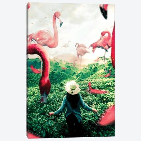 Planet Flamingo Canvas Print #MNU59} by Manuel Luces Canvas Print