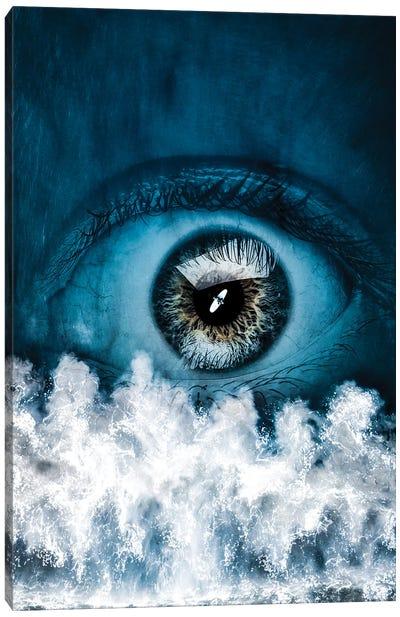 Blue Eye Canvas Art Print