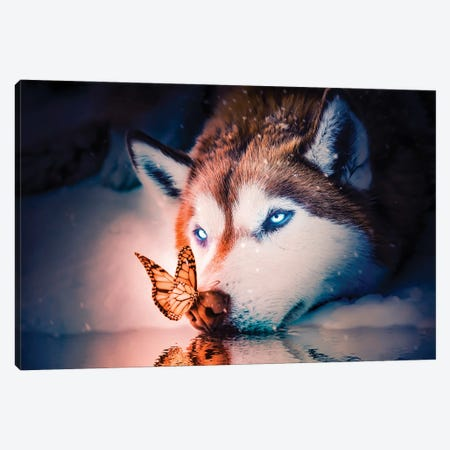 Blue Eyes Wolf Canvas Print #MNU7} by Manuel Luces Art Print