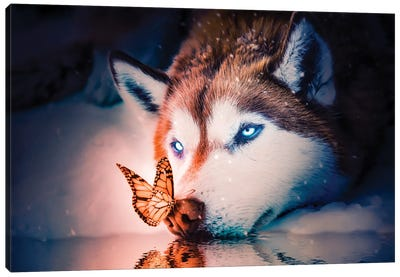 Blue Eyes Wolf Canvas Art Print