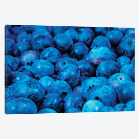 Blue Canvas Print #MNU93} by Manuel Luces Art Print