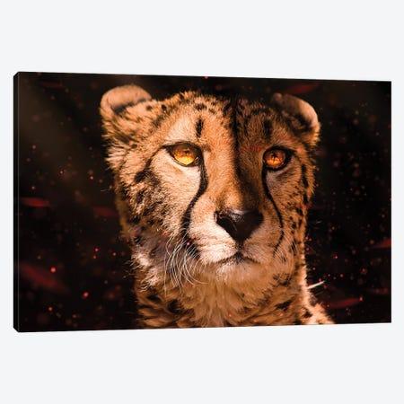 Cheetah Canvas Print #MNU97} by Manuel Luces Canvas Wall Art