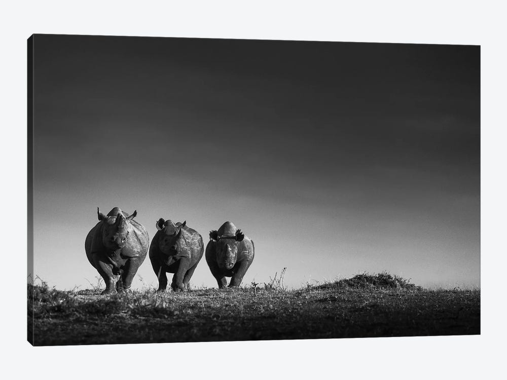 Power by Mohammed Alnaser 1-piece Canvas Print