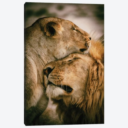 What Is Love Canvas Print #MOA20} by Mohammed Alnaser Canvas Art Print