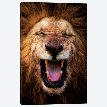 Funny How Canvas Print #MOA2} by Mohammed Alnaser Canvas Wall Art