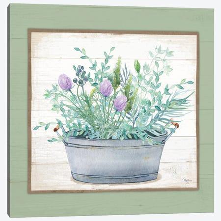 Pot Of Herbs I Canvas Print #MOB65} by Mollie B. Canvas Print