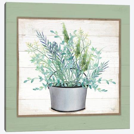 Pot Of Herbs II Canvas Print #MOB66} by Mollie B. Art Print