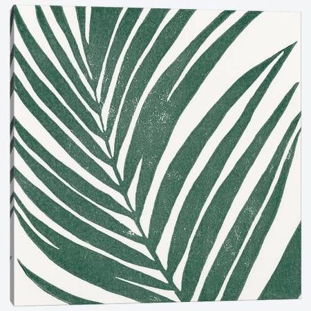 Tropical Treasures III Canvas Print #MOH45} by Moira Hershey Canvas Art Print